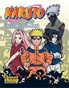 Naruto True Spirit of the Ninja