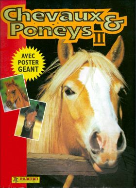 Paarden en Pony's 2